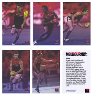 Melbourne F.C. Cards 2008 - from Season Launch Function?NEED: C. Bruce, A. Davey, B. Green, B. McLean, D. Neitz -
