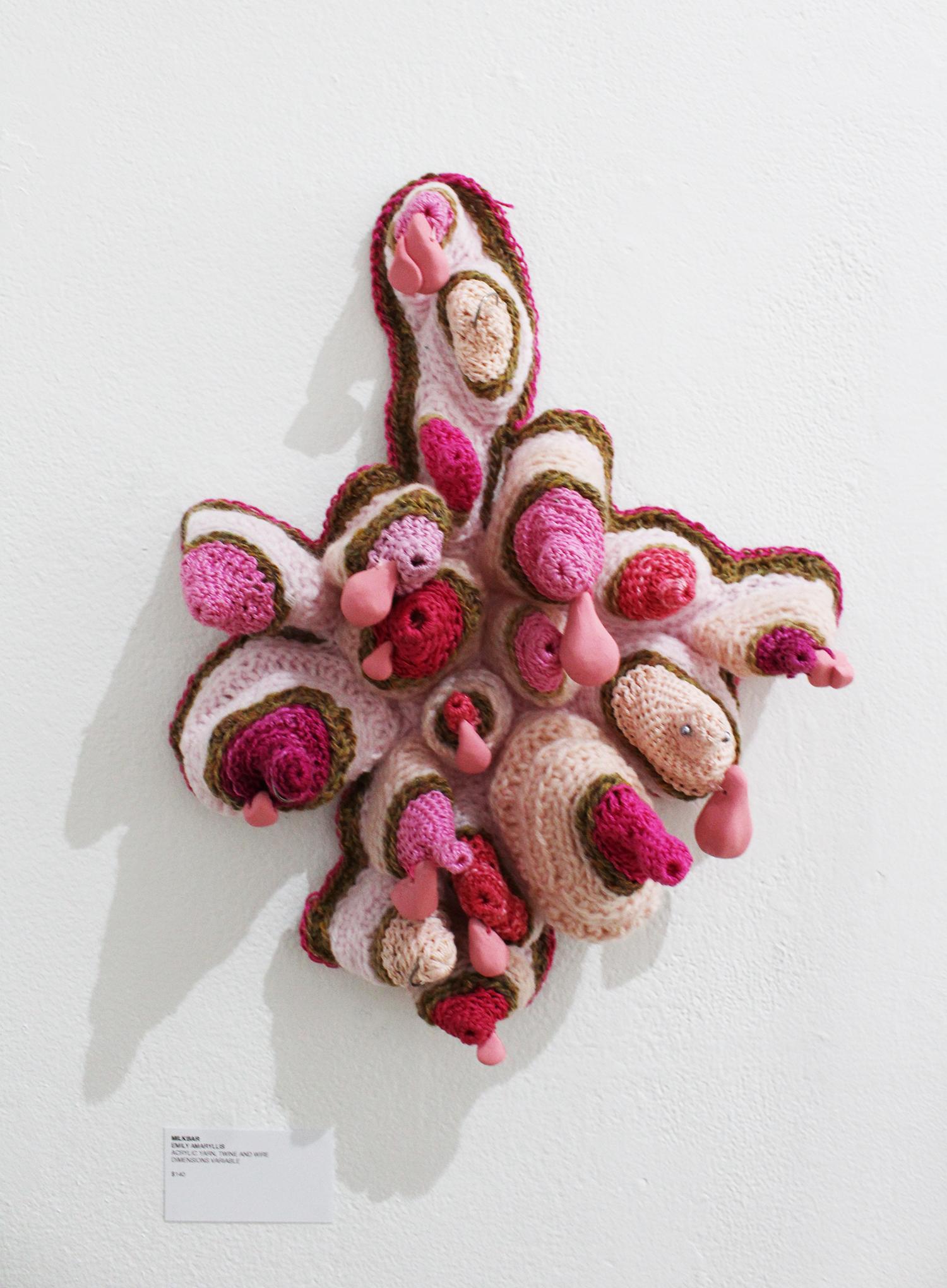 Emily Amaryllis,  Milkbar , acryllic yarn, twine and wire, dimensions variable