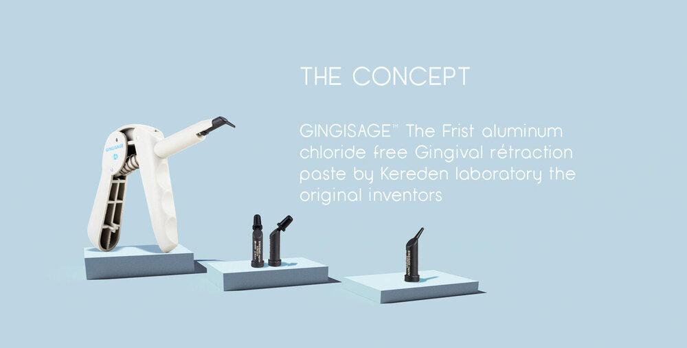 GINGISAGE_VISUEL+OKgghh.jpg