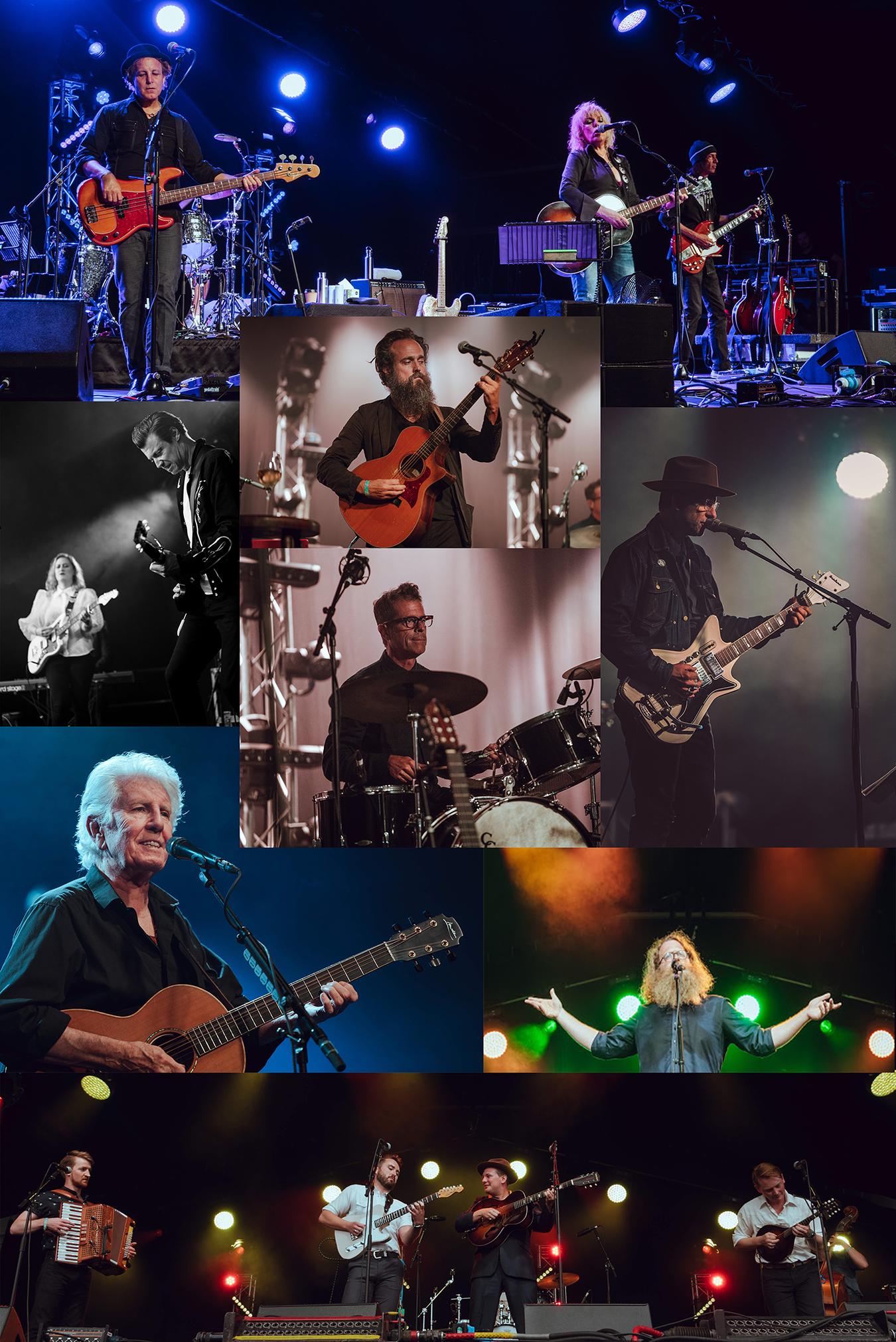 cambridgefolkfestival_collage.jpg