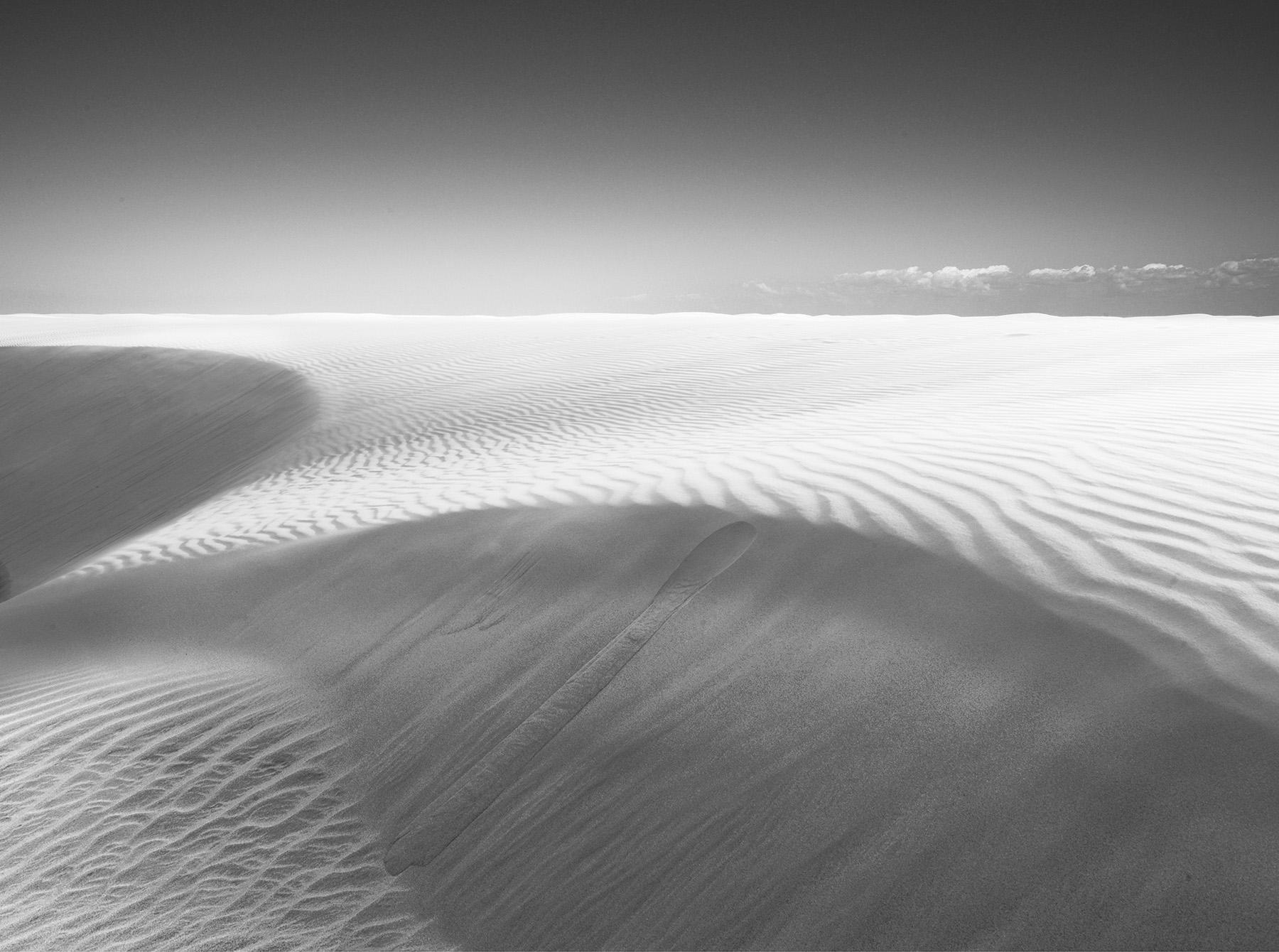 Dune-1.jpg
