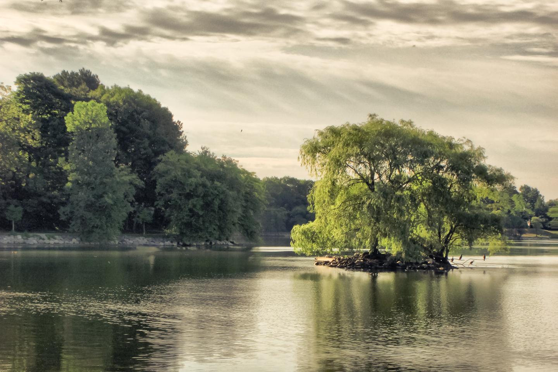 pond island-1.jpg