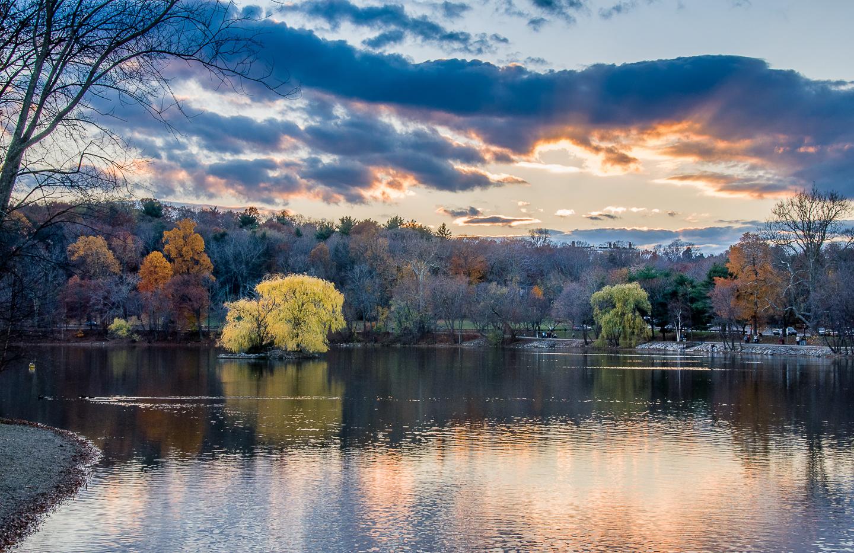 pond island-5.jpg