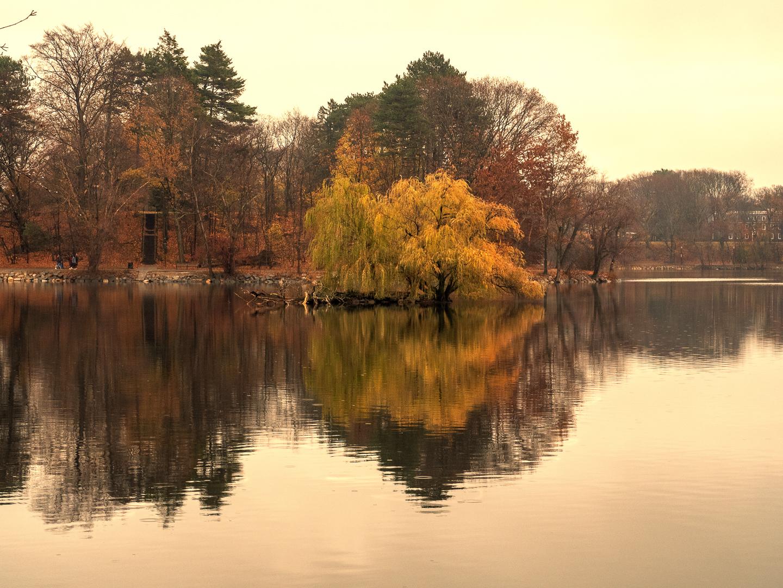 pond island-7.jpg