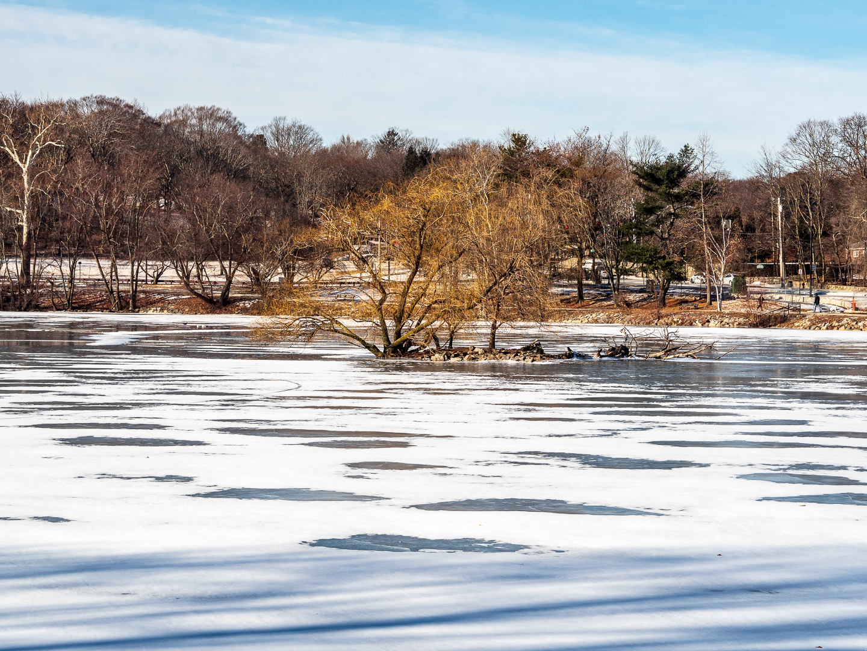 pond island-13.jpg