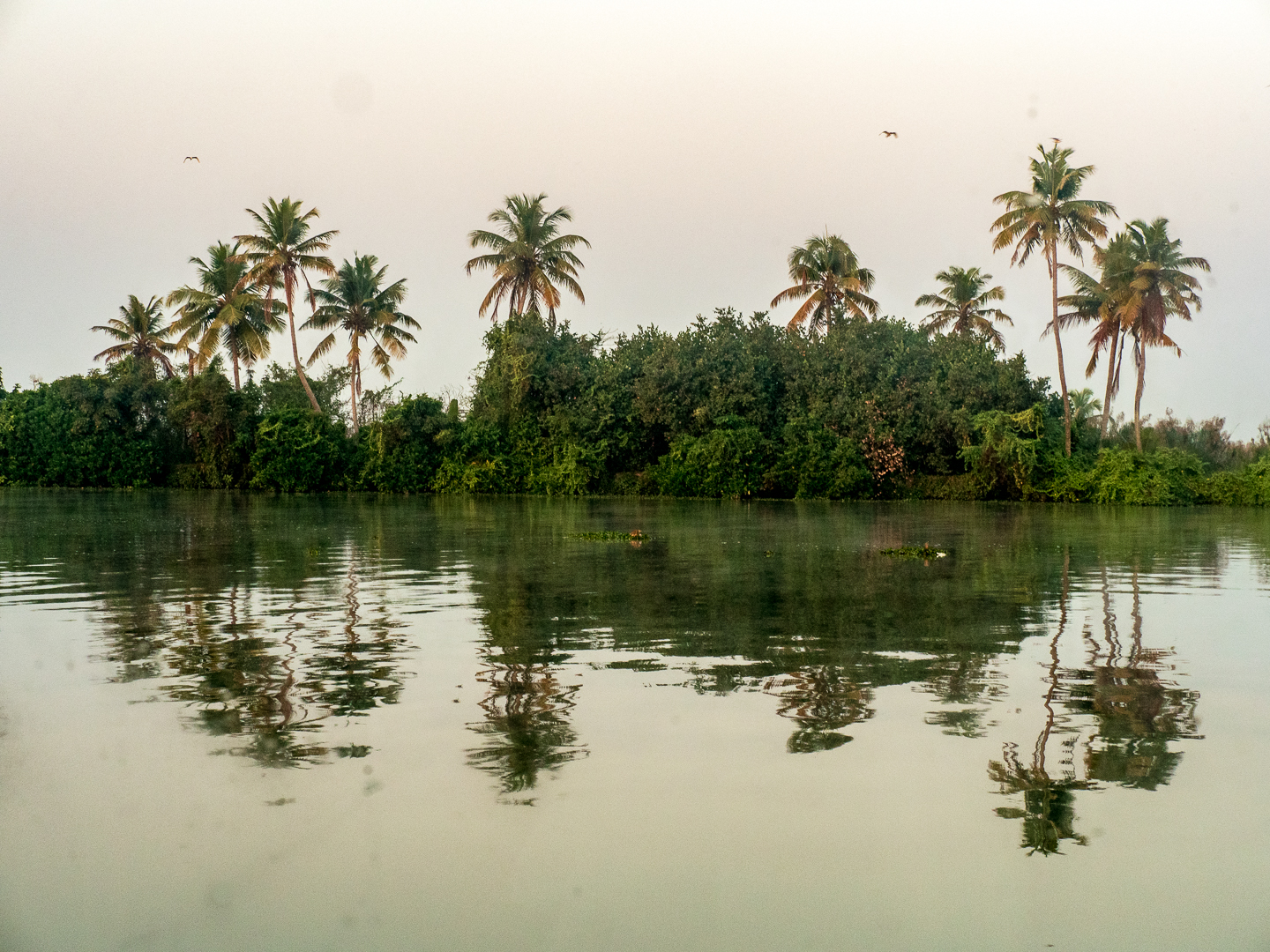 Sunrise along the backwater and canals near Alleppey