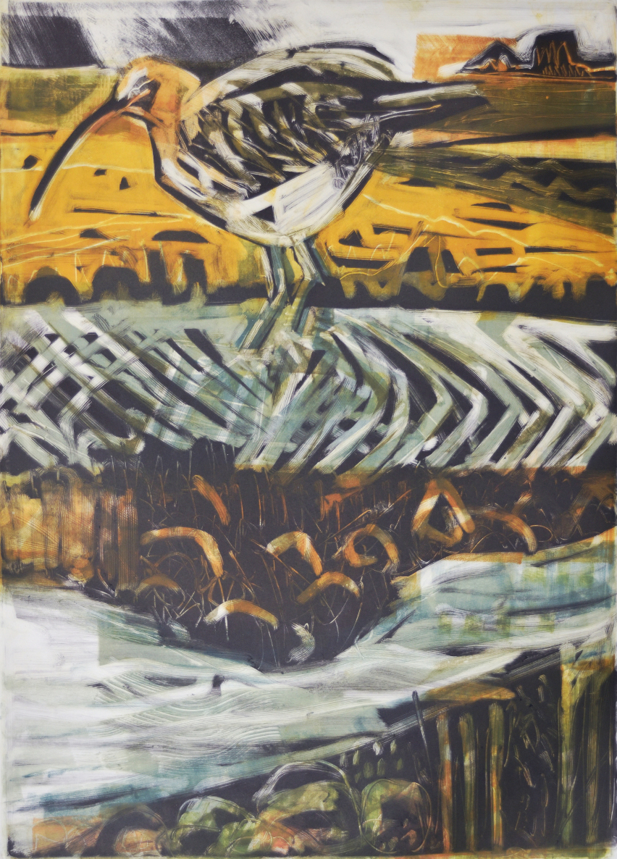 Kittie Jones Work - Feeding Curlew.jpg