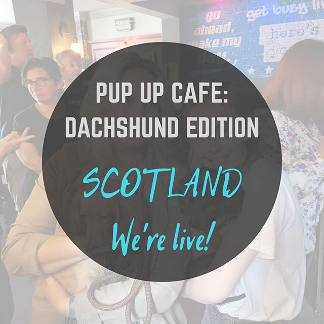 Scotland - we're coming for a whole Dachshund filled weekend! First Edinburgh (July 20th at @pieceboxcafe) then Glasgow (July 21st at @revolutionmitchellst) We can't wait! Events live on our Facebook and tickets live on our website now! 🐶🌭 • •  Tickets: www.pupup.cafe/tickets •  #puppuccino #pupupcafe #dachshund #dachshunds #dog #dachshundsofinstagram #dogs #dogsofinstagram #sausagedog #doxie #dachshundlove #dachshundoftheday #dachshundpuppy #puppy #dogstagram #love #teckel #sausagedogcentral #wienerdog #doxiesofinstagram #instadog #minidachshund #weinerdog #cute #miniaturedachshund #doxielove #puppylove