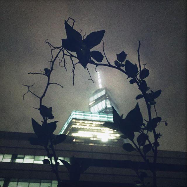 Gotham...... te veo