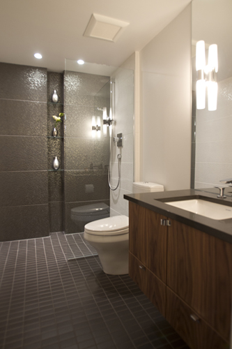 Main Bathroom : walk-in shower, minimal glass partition + custom vanity.