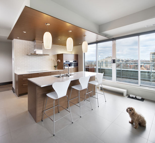 Kitchen : walnut cabinets + floating ceiling.