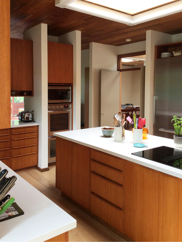 Marshall Kitchen 1 Yvonne Potter Interior Design Ottawa.jpg