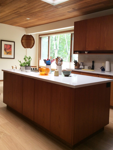 Marshall Kitchen 5 Yvonne Potter Interior Design Ottawa.jpg