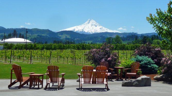 Mt. Hood Winery mountain scene