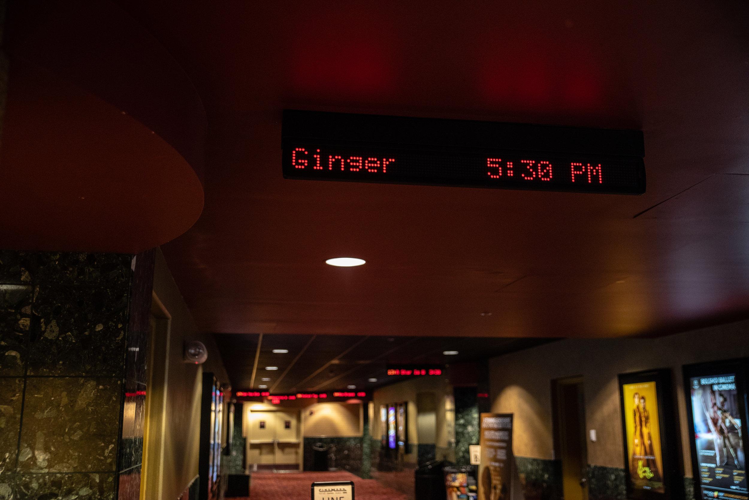181112_Ginger_Screening_028.JPG