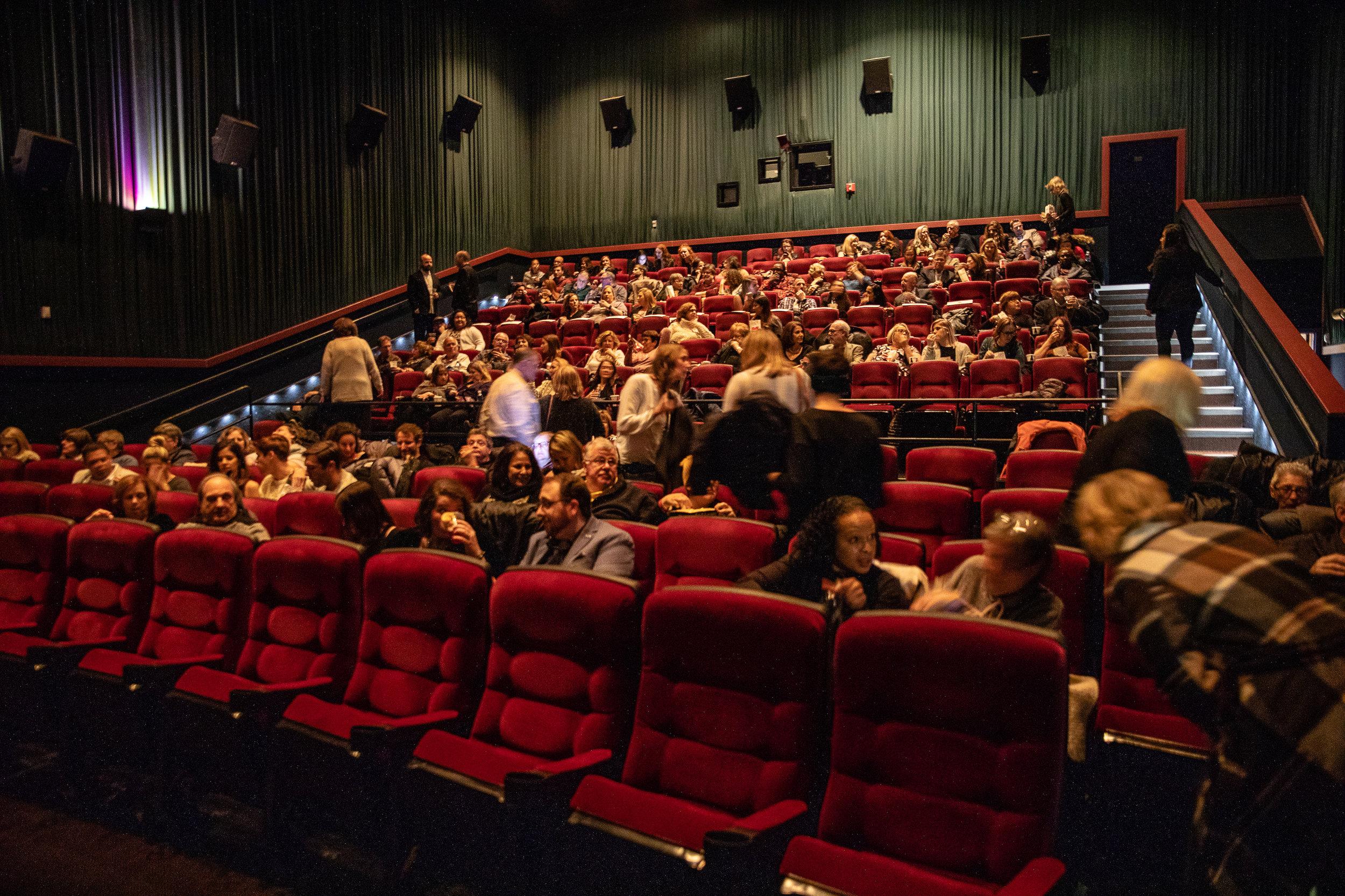 181112_Ginger_Screening_032.JPG