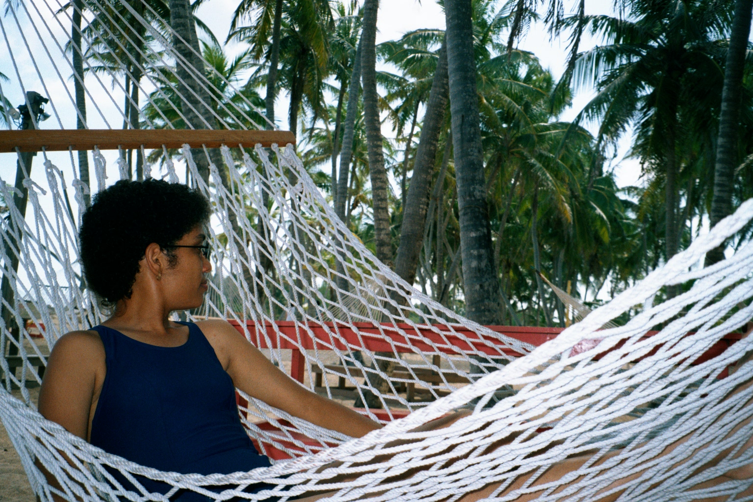 Amarilis in hammock_The Bahamas.JPG