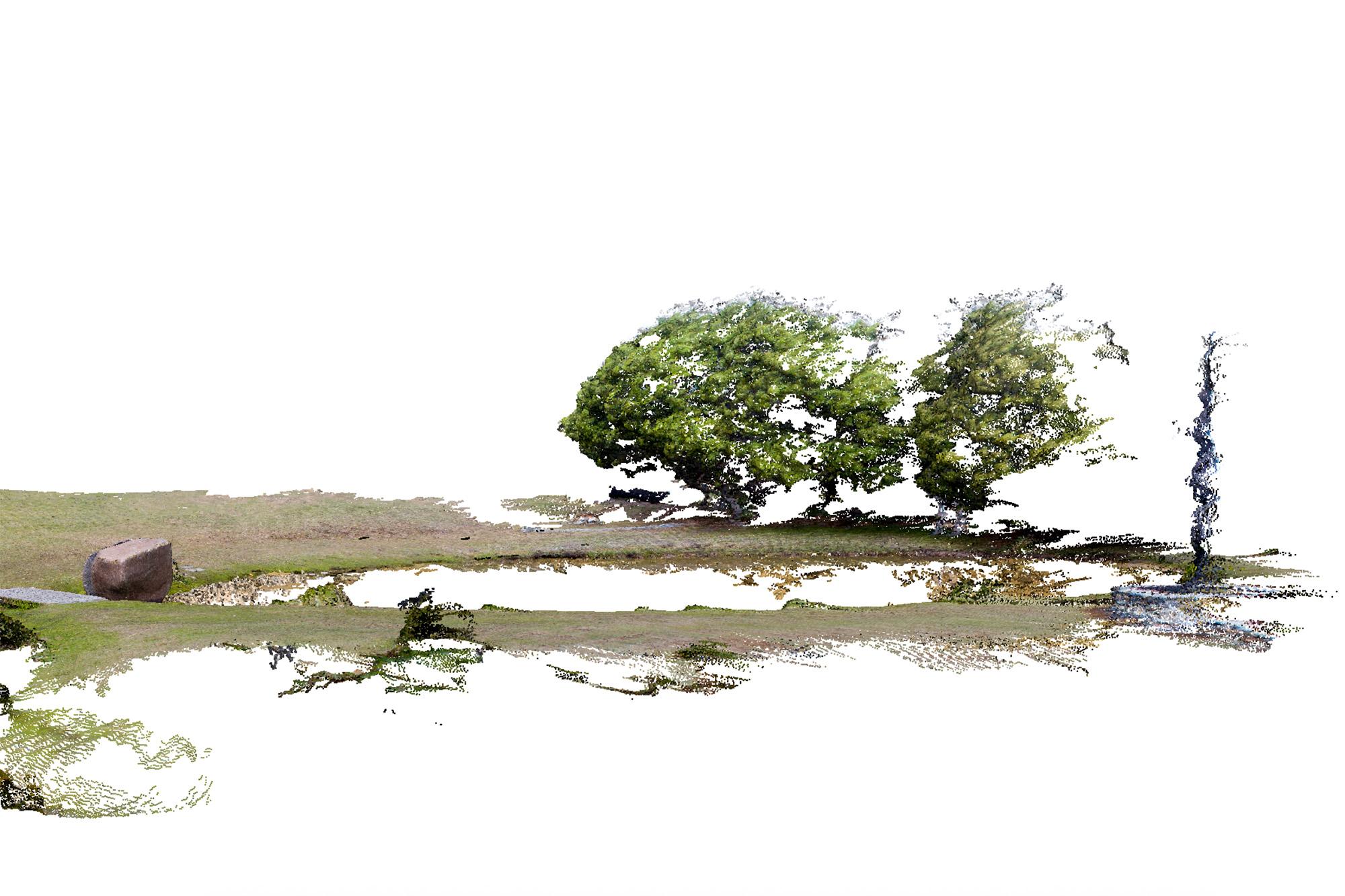 Point Cloud Series, Split Rock and Trees, Windgrove, Tasmania