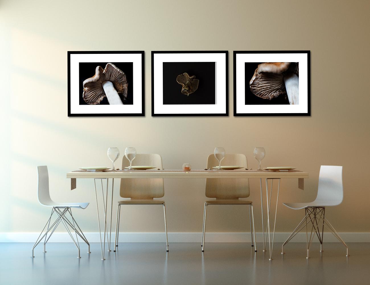 MushroomPhotographyWallArt.jpg