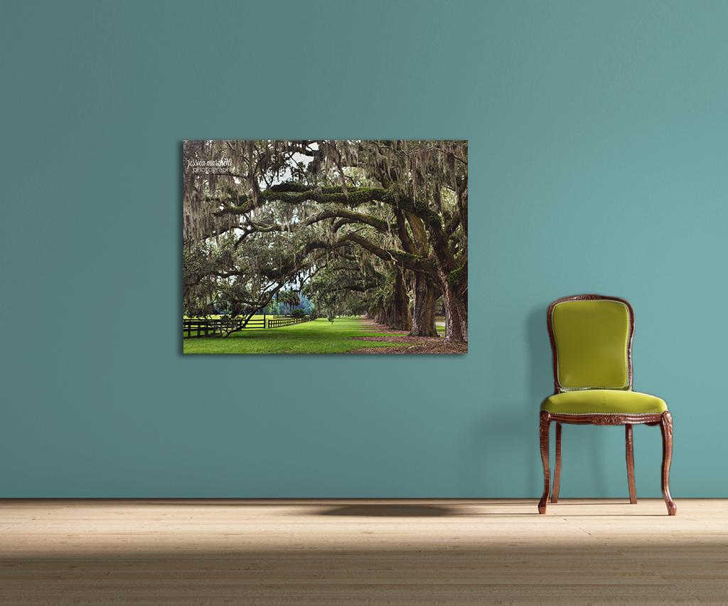 oak chair.jpg