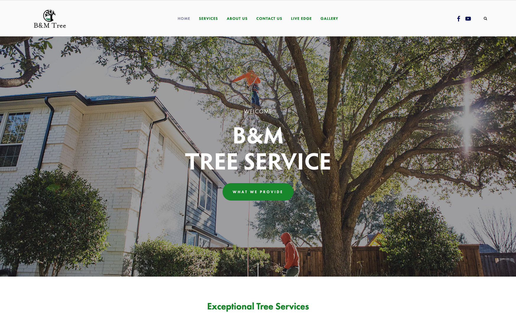 BM Tree Trim      - A Squarespace website for a local tree service company, also featuring Jessica's photography of client's services