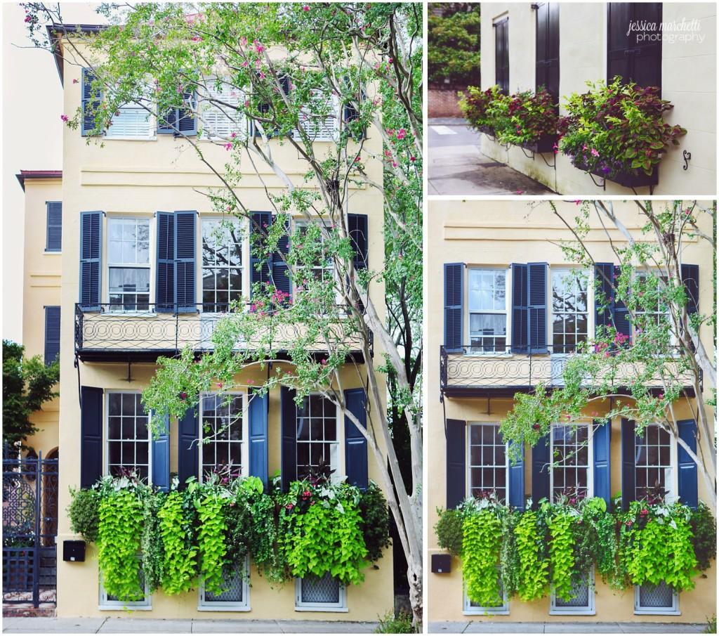 Charleston South Carolina Images_16