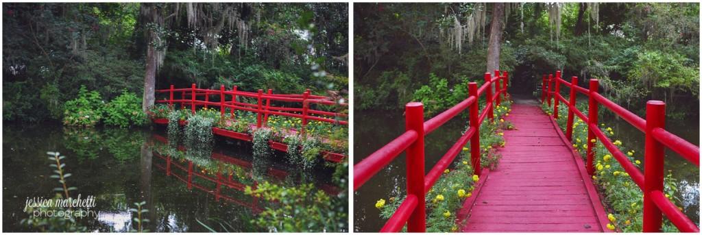 Charleston South Carolina Images_34