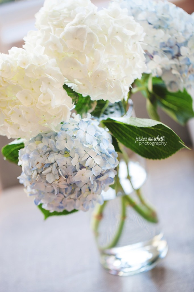 Hydrangea Print Photography_0009