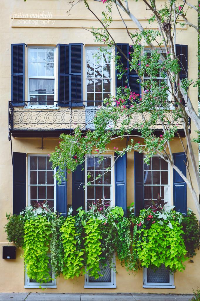Historic Yellow Charleston Home Rainbow Row Photography