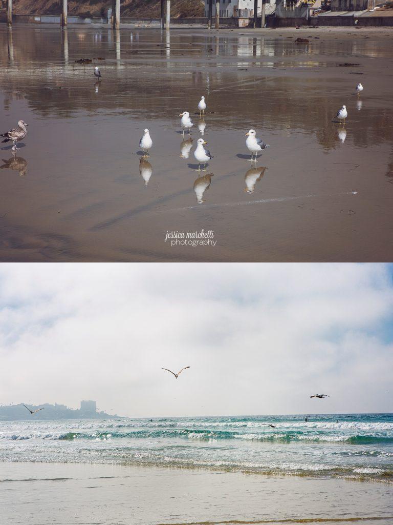 Landscape-Photograph-Wall-Art_0041-768x1024.jpg