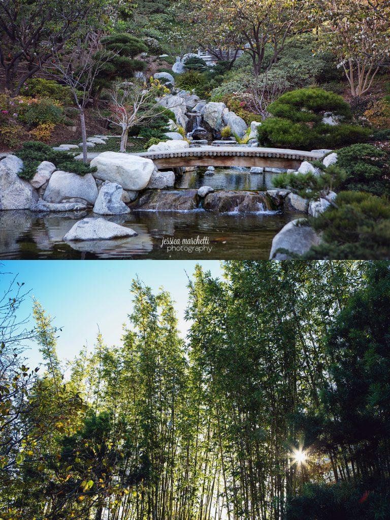 Landscape-Photograph-Wall-Art_0042-768x1024.jpg