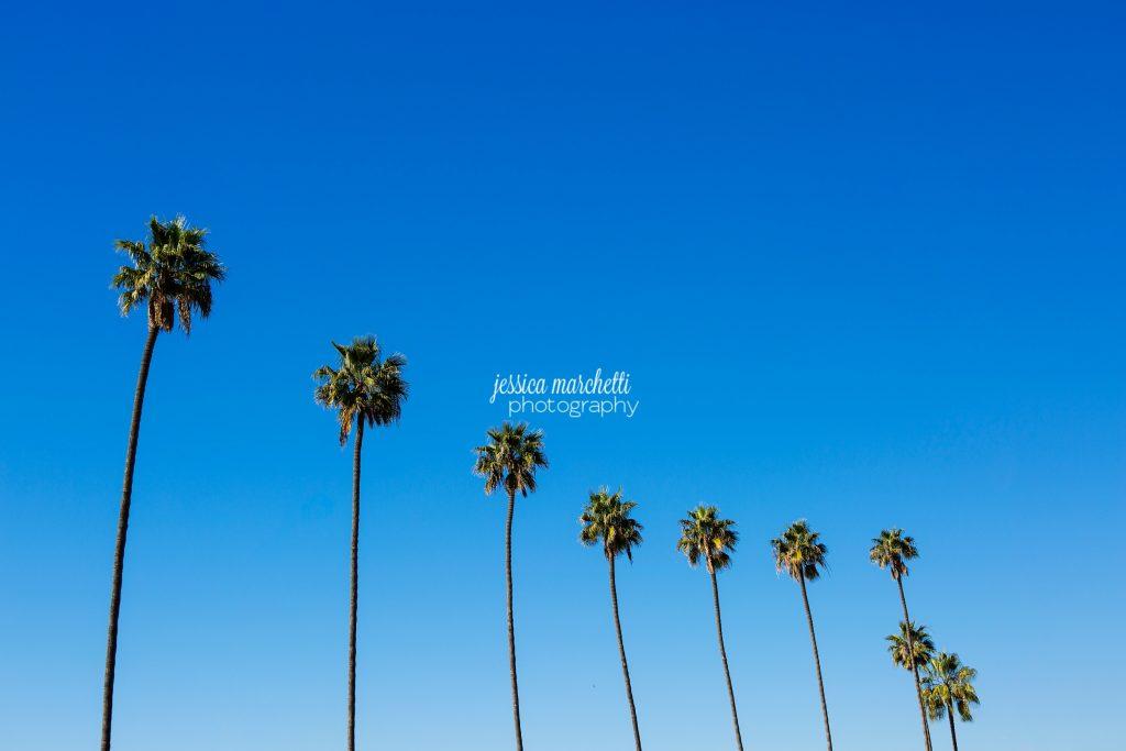 San Diego Travel Photography Wall Art-1