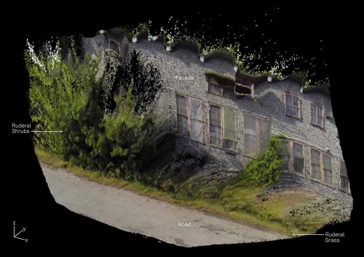 Disturboretum-PC01.jpg
