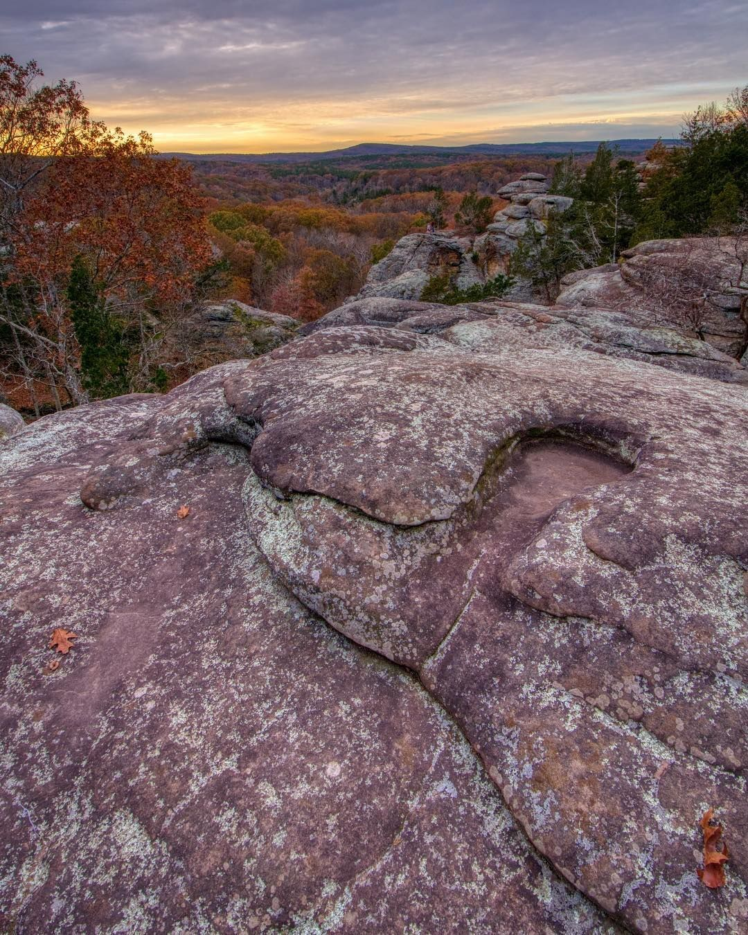 Garden of the Gods by @pics_by_skinner