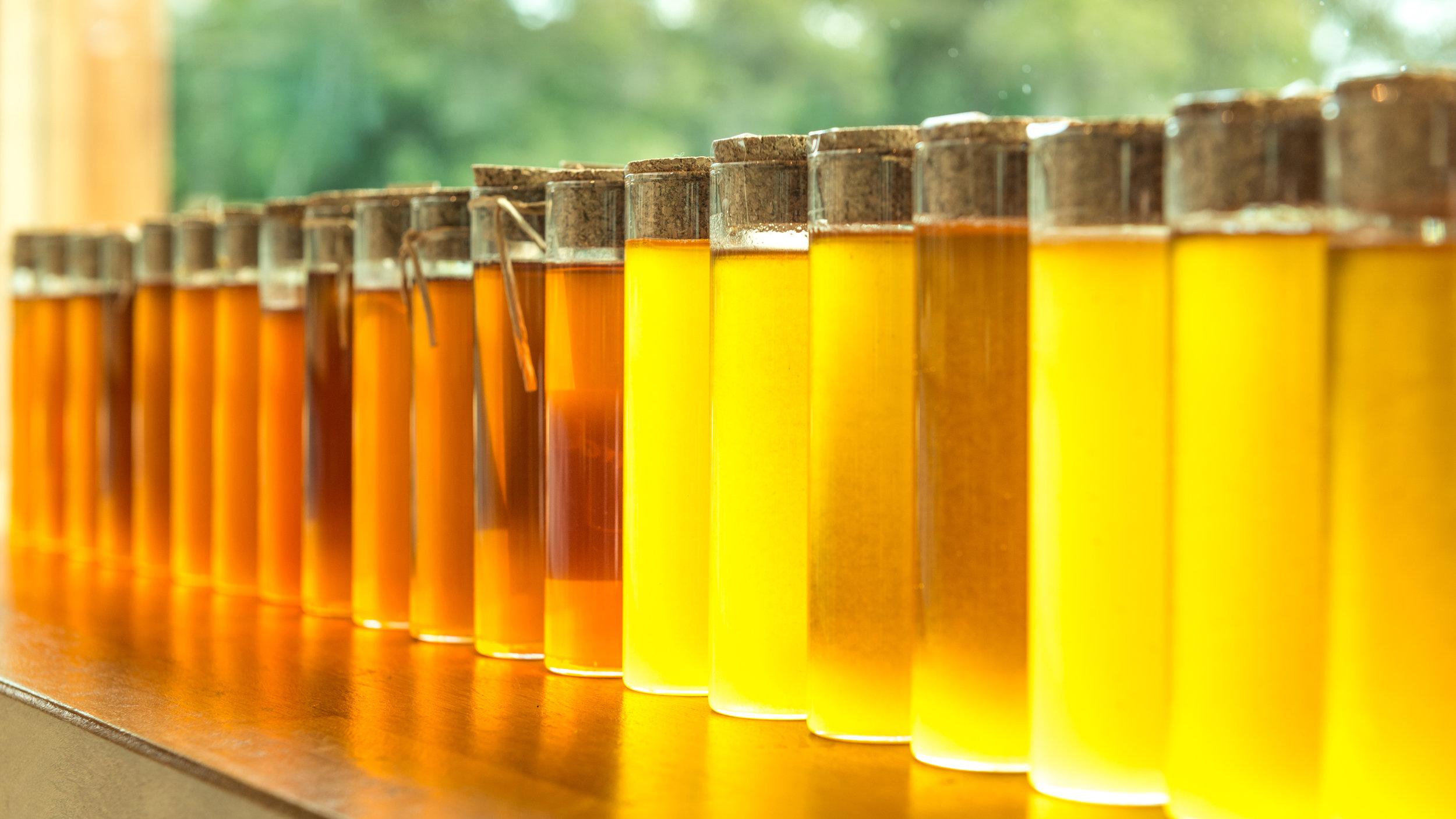 Barnyard Bees flavours.jpg