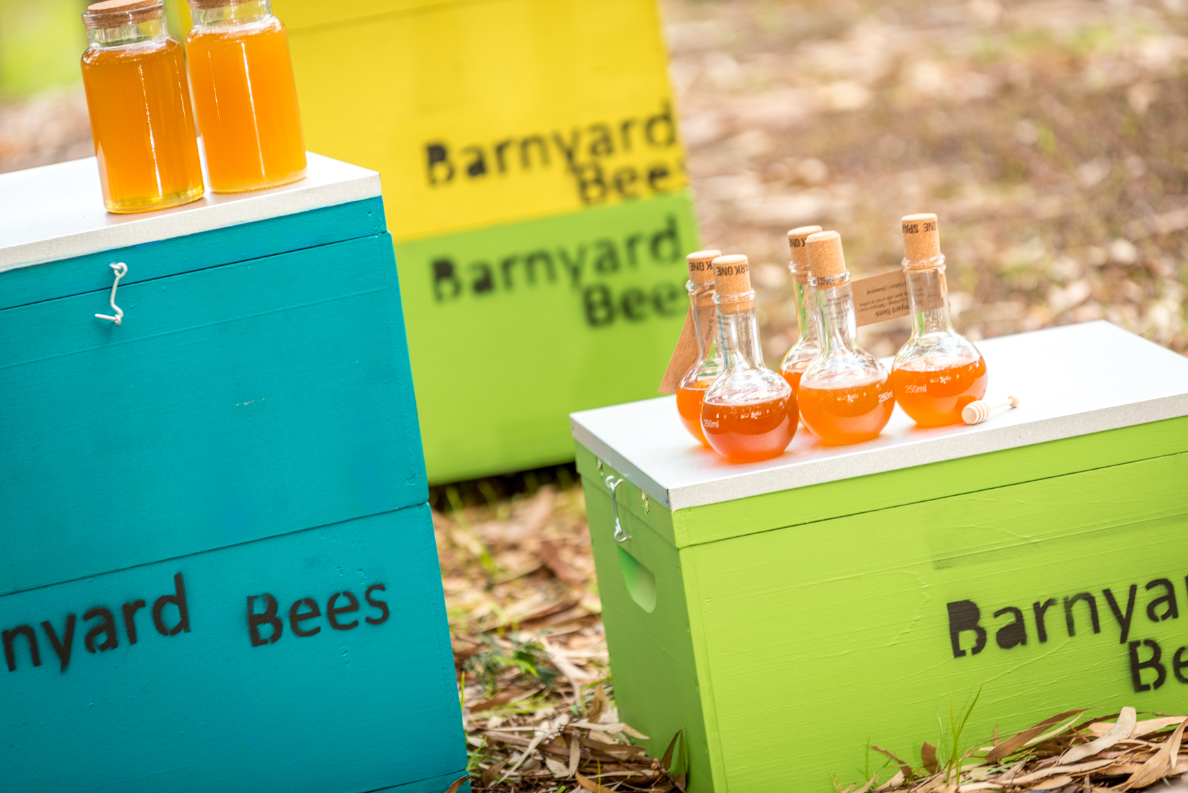 Barnyard beehives.jpg
