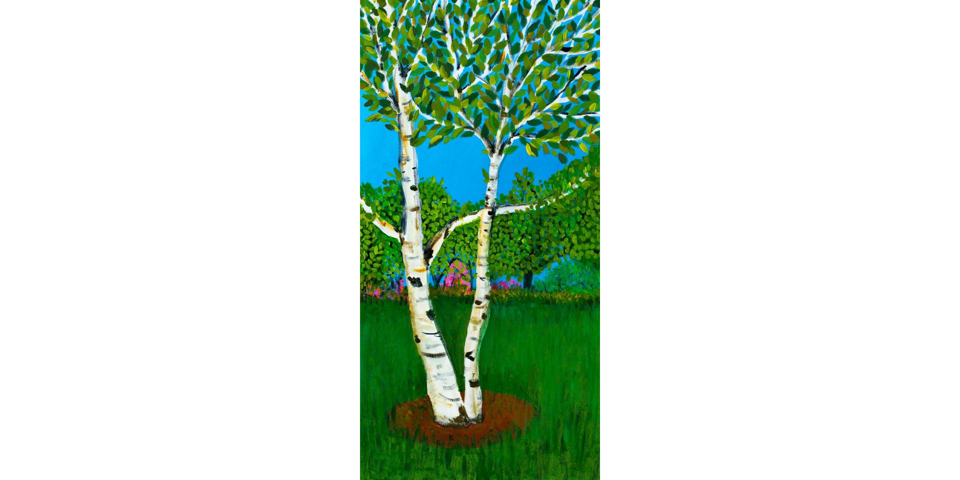 Birch Trees in the Garden