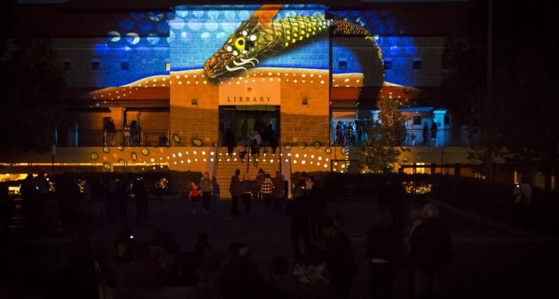 Reverse Dreamtime Project - This project involved designing a series of artworks for the Reverse Dreamtime Projection Show as part of the City of Joondalup's Kaleidoscope Festival.Source: https://illuminart.com.au/project/reverse-dreamtime-story/