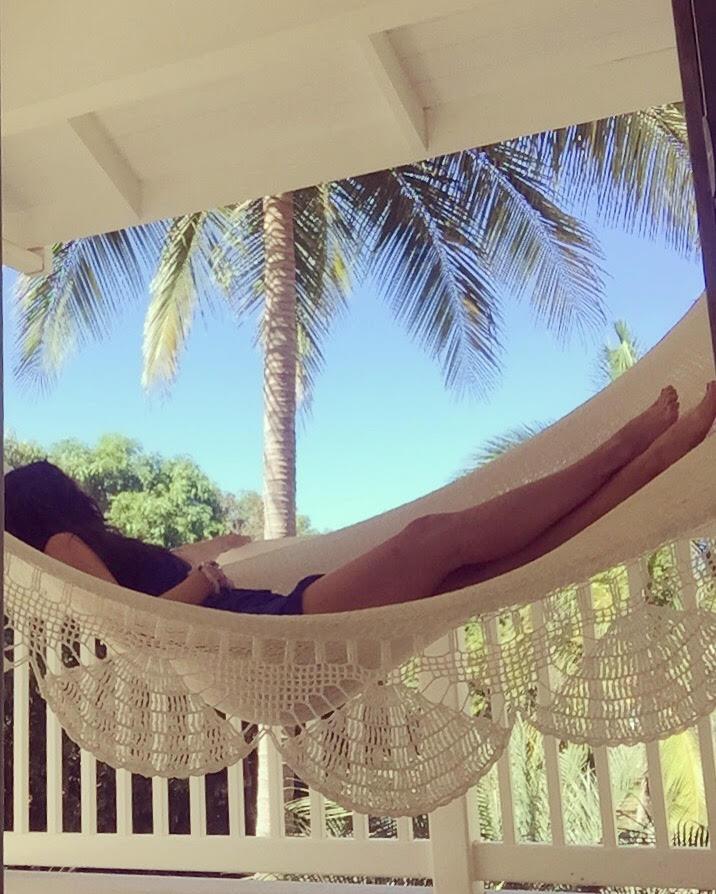 carrie hammock