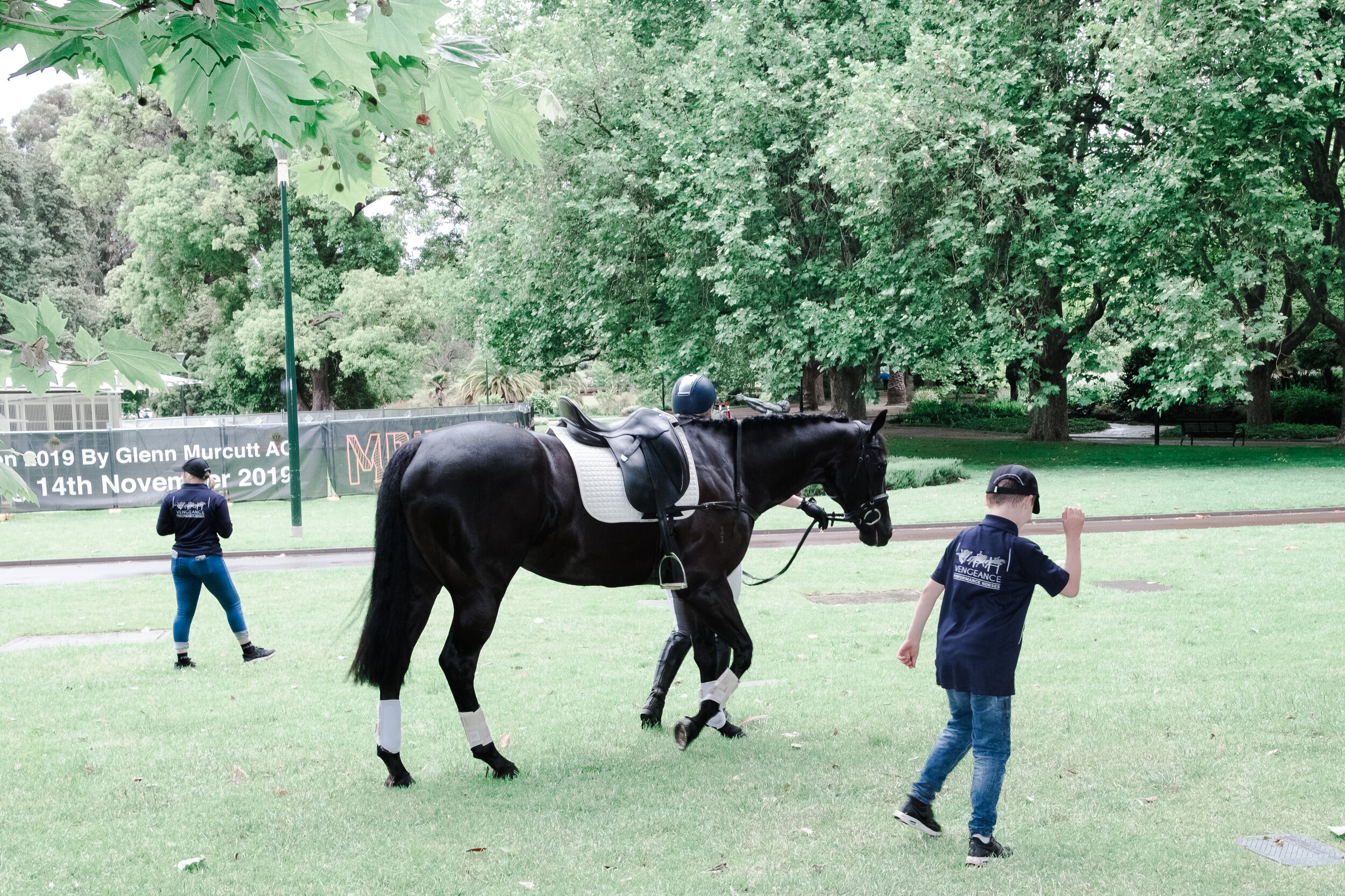 A rider walks their horse around the park after the parade. (Photo: Jeremy Gan)