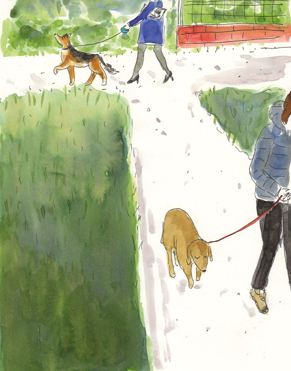 illustration-park-deborahlaetsch.jpg