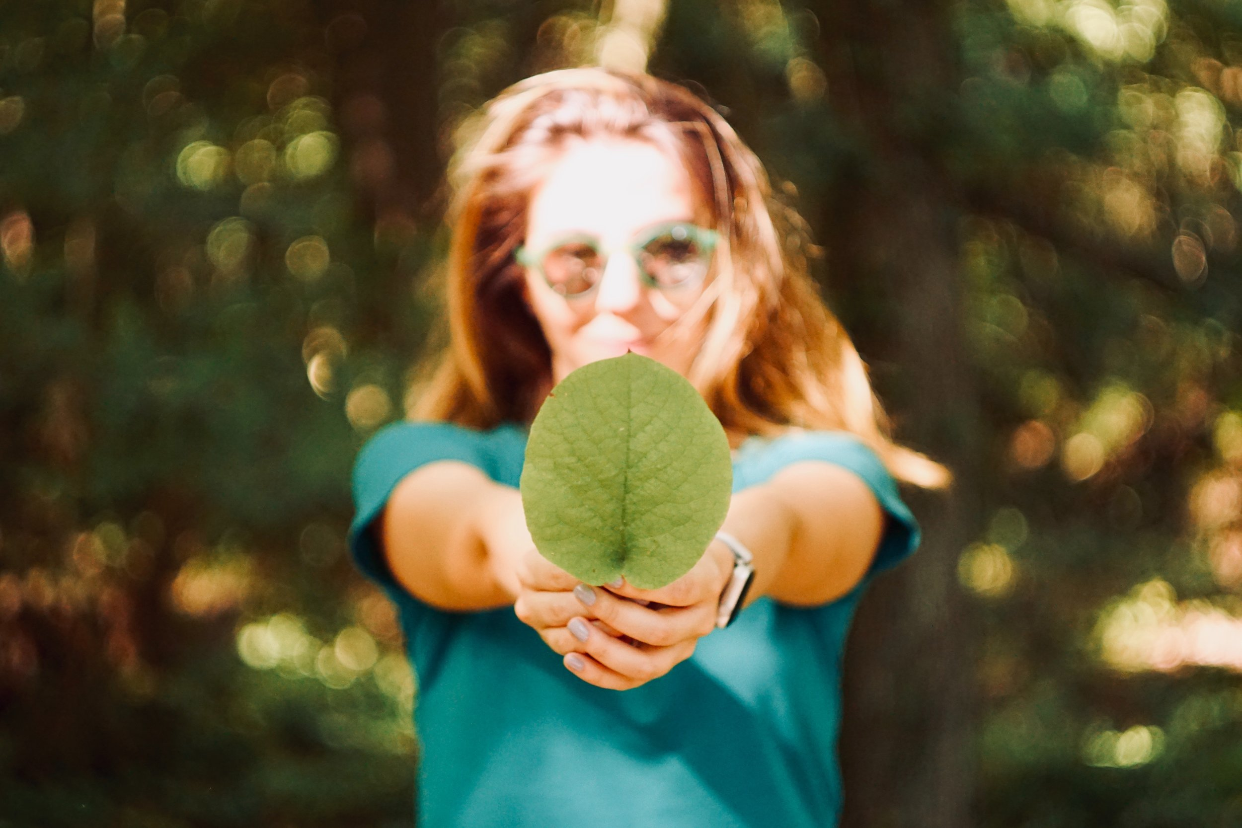 Environmental Organisations -