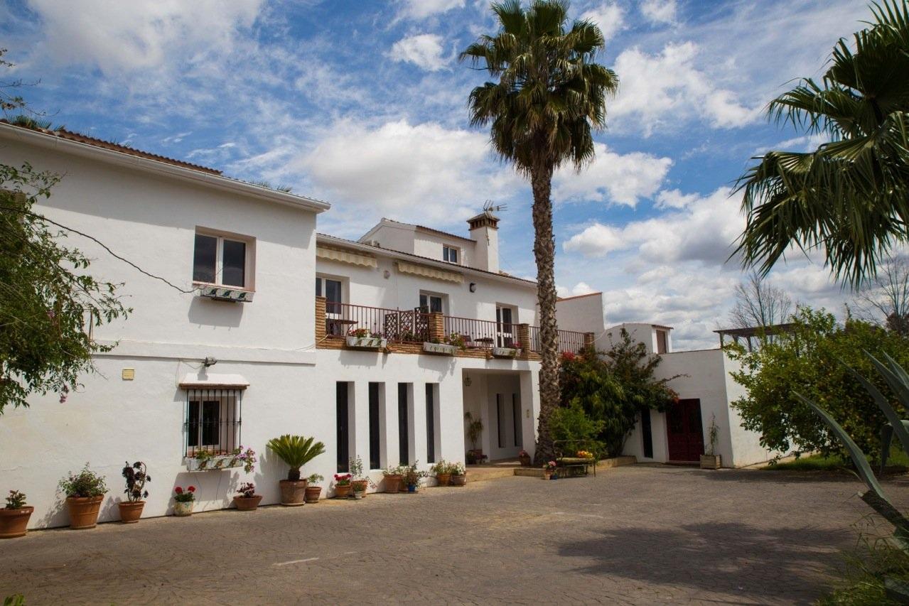 Fuego Blanco - Malaga, Spain