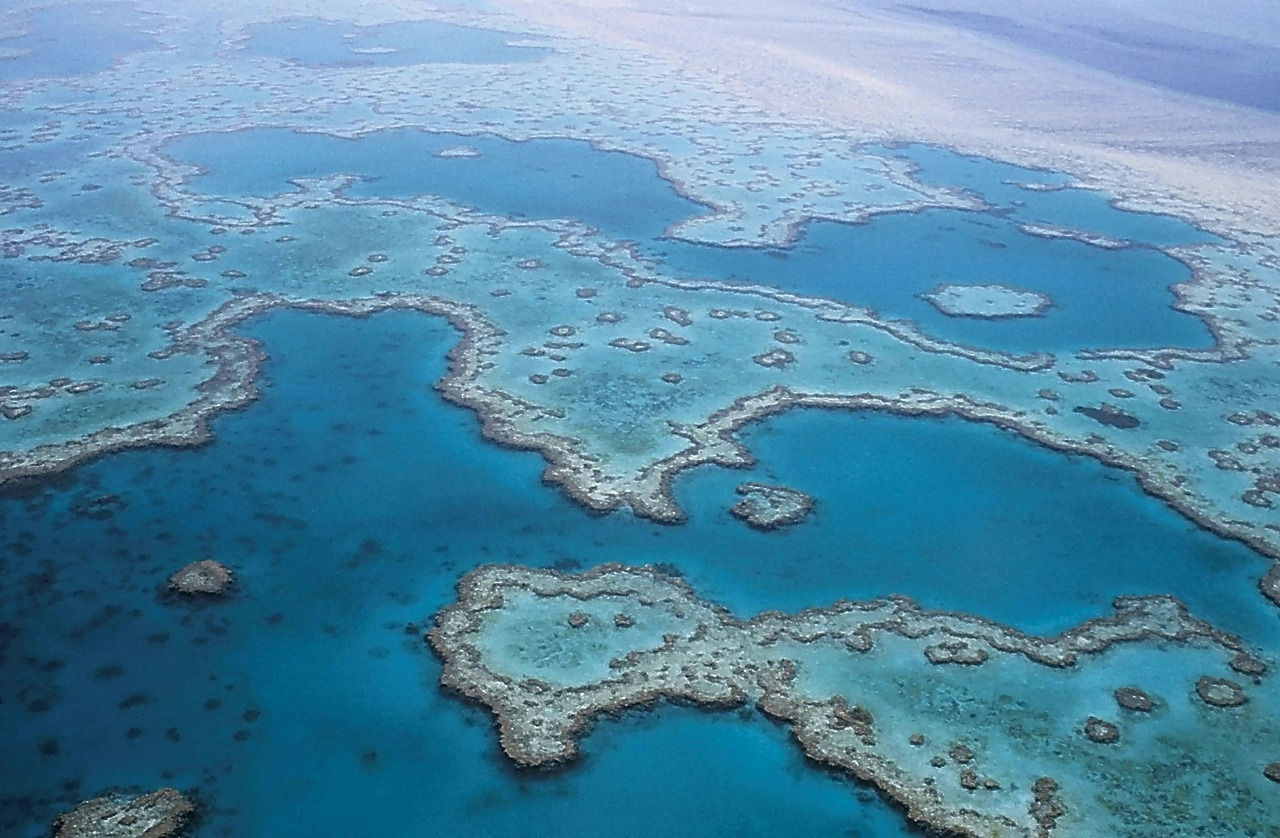 2 Day 1 Night Great Barrier Reef - Live aboard a fantastic sailing boat and embark an a trip of a lifetime snorkeling & intro diving