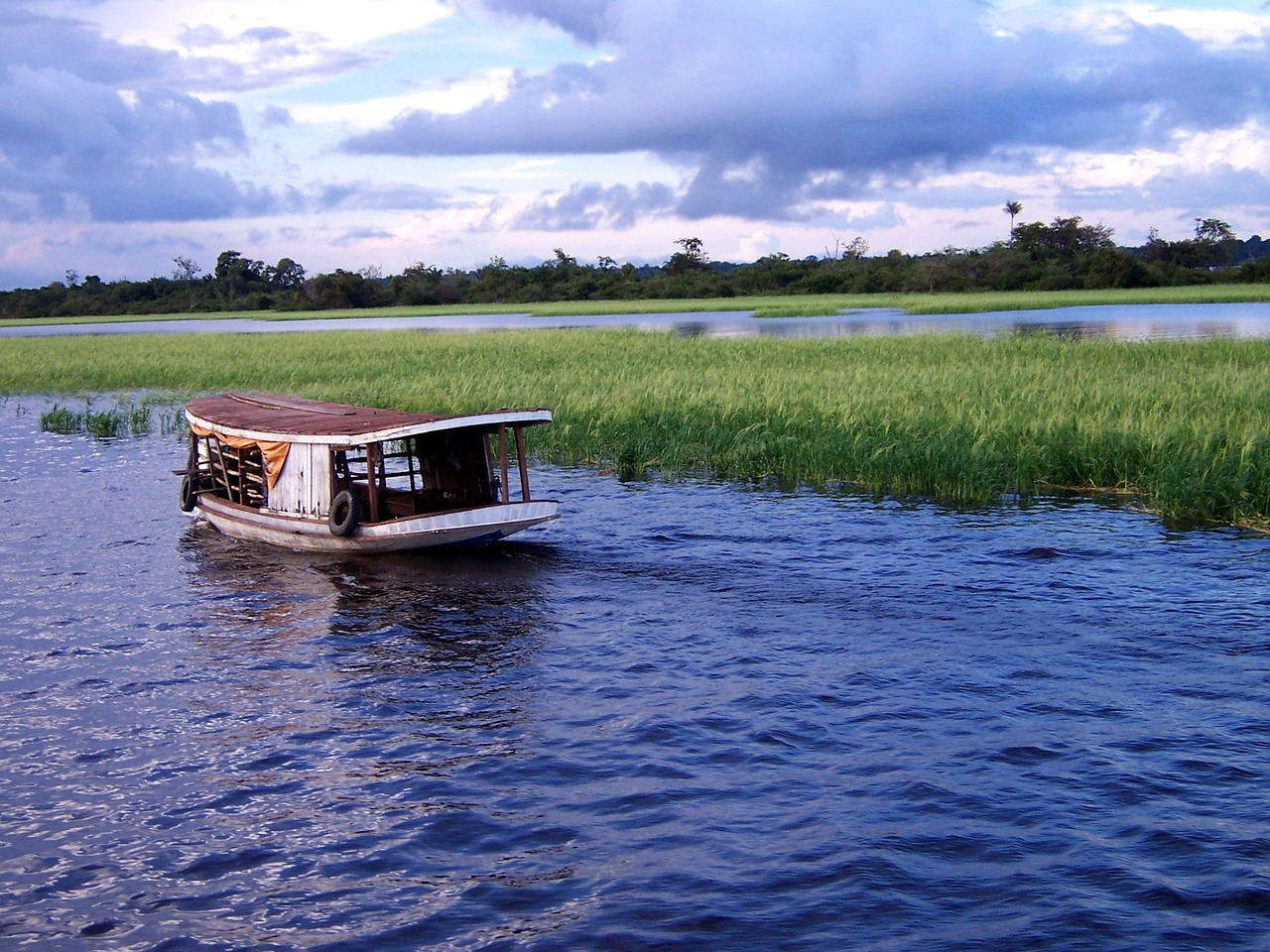 River tours are a great way to experience the wonders of the Amazon.