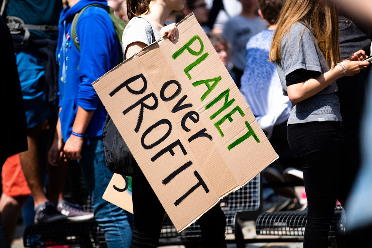 "Signs during the demonstrations ranged from ""There is no Planet B"" to ""Planet over Profit"""