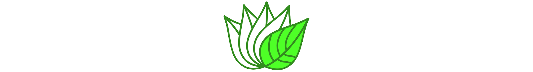 0_1 Leaf long.png