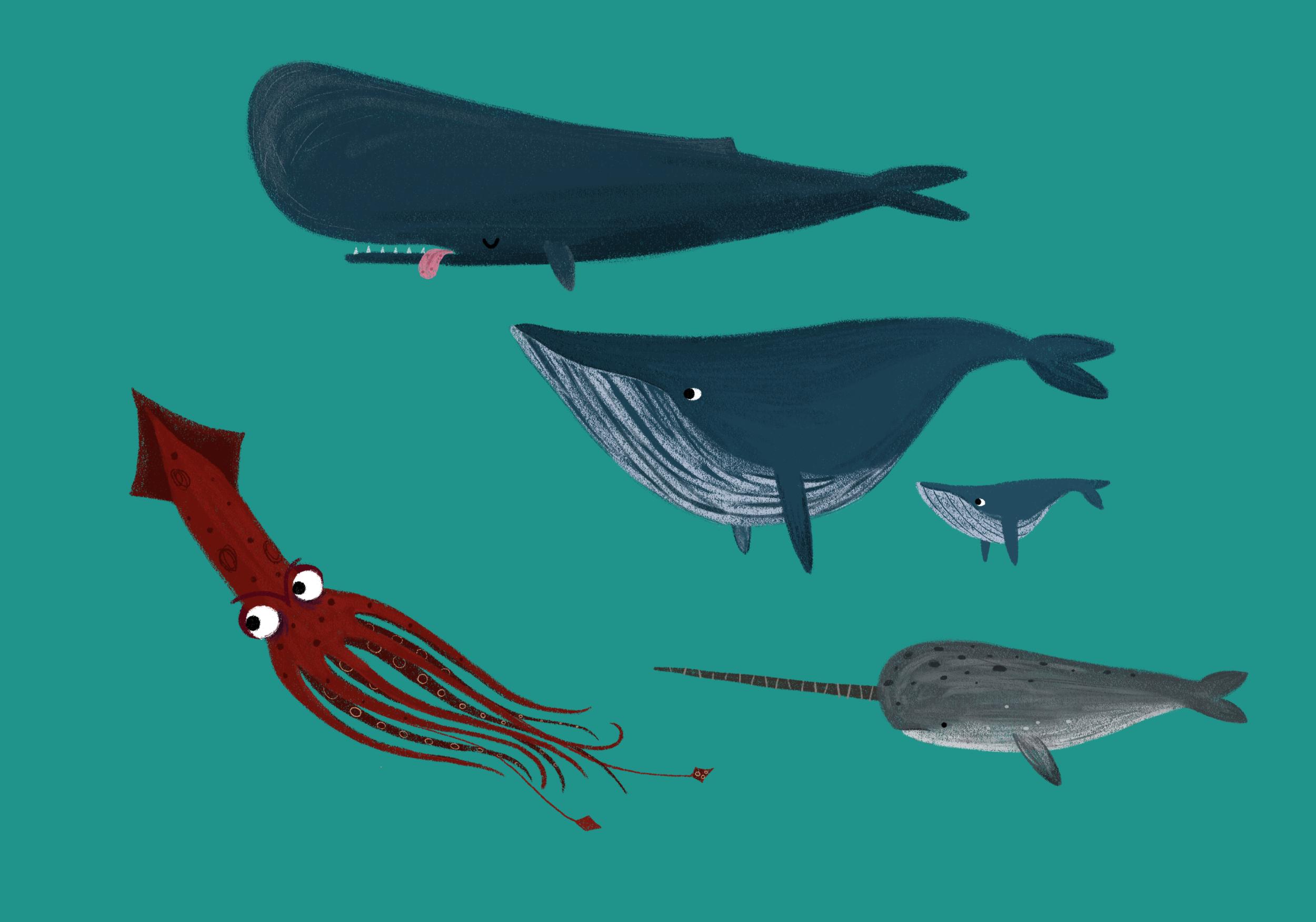 SeaLife_v1.png