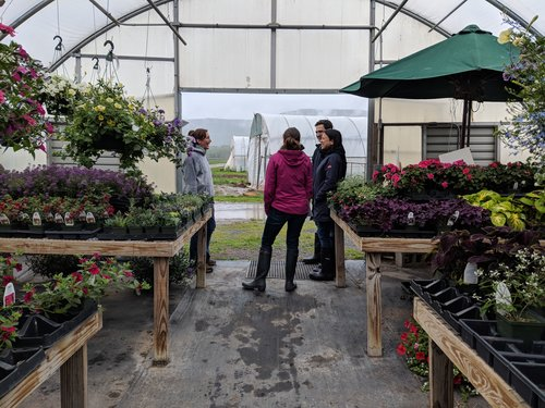 Love the farmers market? Lets experience the farms themselves! - We'll cruise the beautiful mountains in our comfortable 15 passenger van.At each stop, the farmer will take us on a private tour of their incredible farms. Each tour is an intimate opportunity to see how your food is grown up close.Along the way we'll share our favorite spots in the area and some of the history and stories of the region. We'll also sample lots of great food and stop at one of the farm cafe's for a locally sourced meal.For more information click here for FAQs.