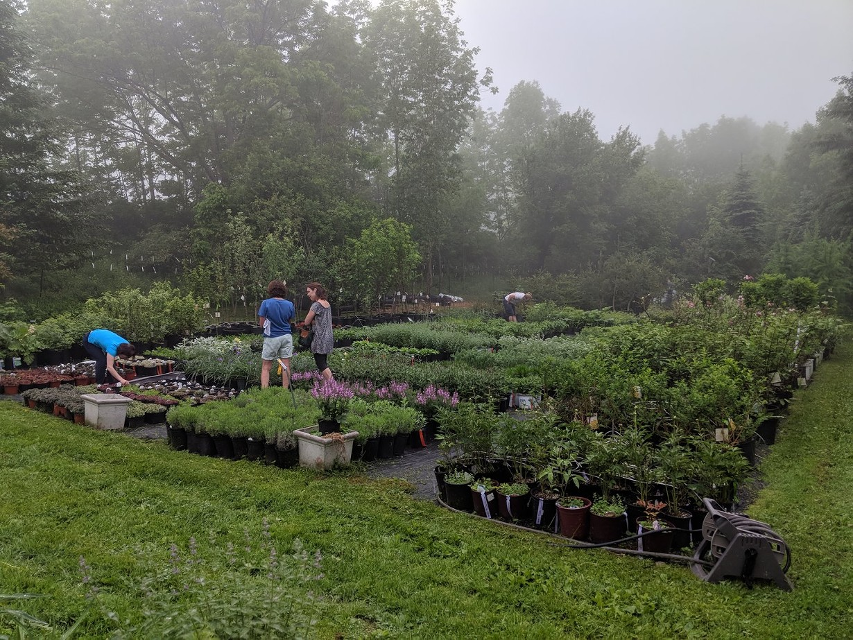 A New Delaware County Agritourism Venture Connects Farmers and Consumers - CHRONOGRAM